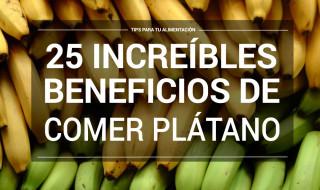 pencas de plátano
