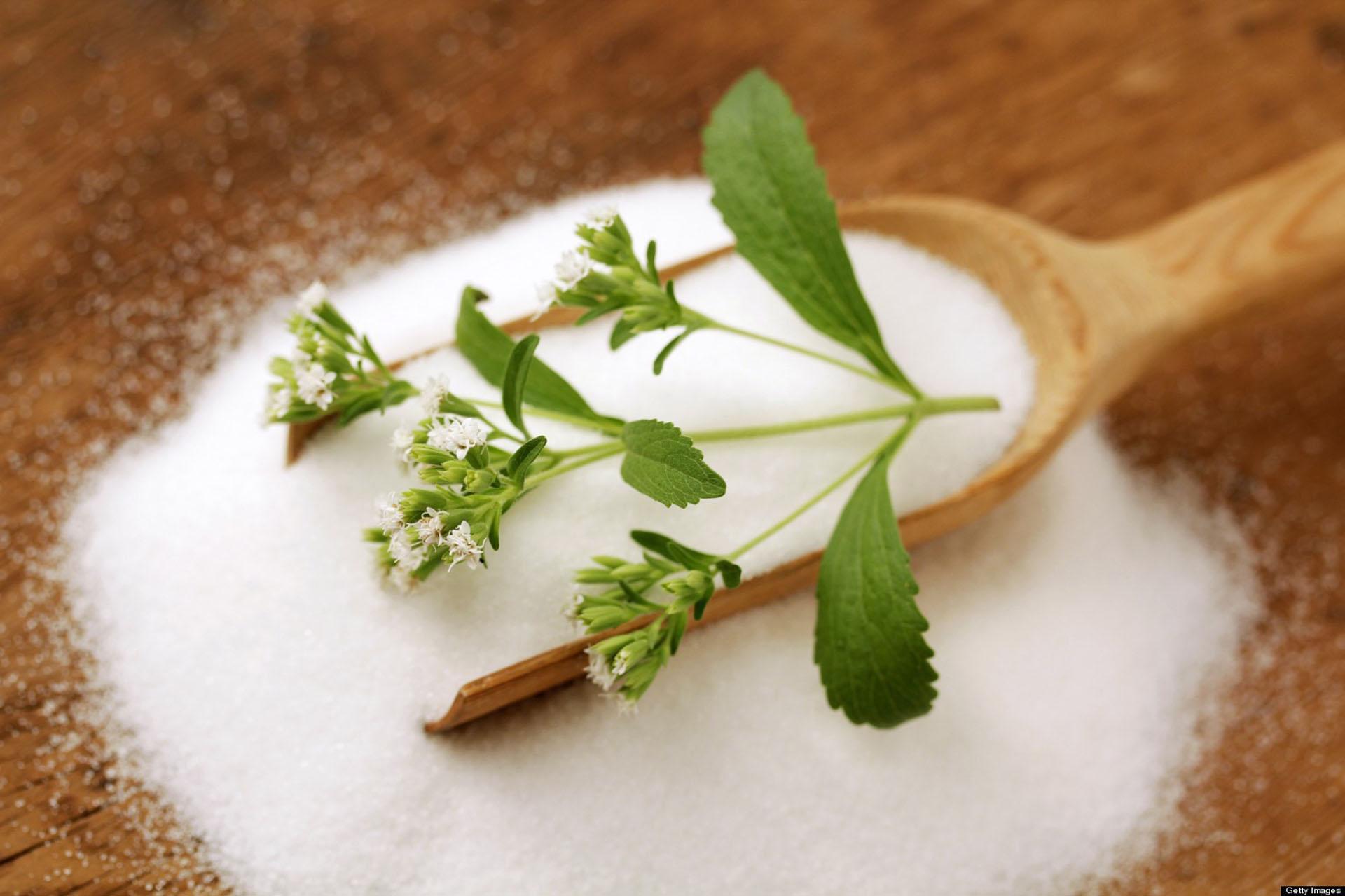 6 Edulcorantes Alternativos Al Azúcar Que La Naturaleza Te Brinda